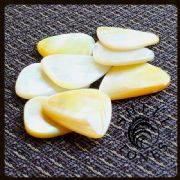 Shell Tones - Gold Pearl - 4 Guitar Picks | Timber Tones